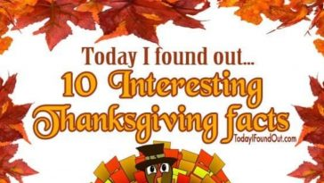 10 interesting thanksgiving facts infographic 1