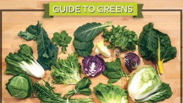 guide to greens infographic 1