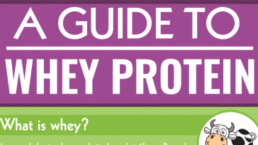 guide to whey protein1