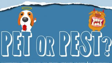 pet or pest infographic 1