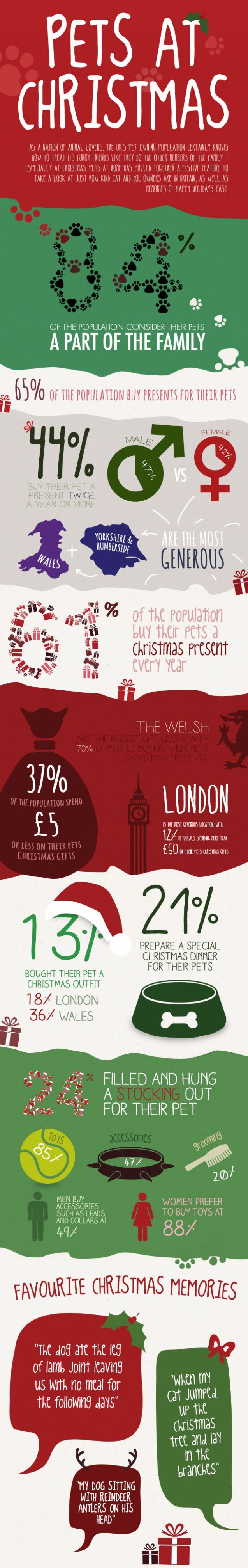 pets at christmas infographic 1